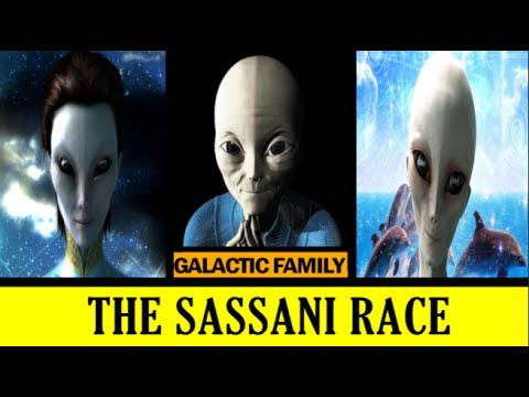 hqdefault sassani