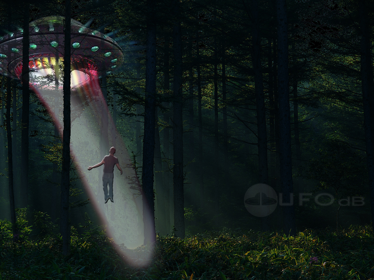 UFO_wallpaper_Deep_Forest_Aliens_Abductions_1280x960