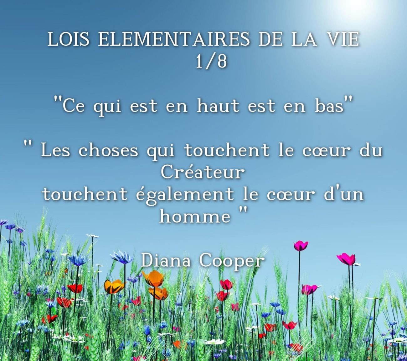 wp-LOIS-L-MENTAIRES-DE-LA-VIE-1-8-Ce-qui-es_1536667311