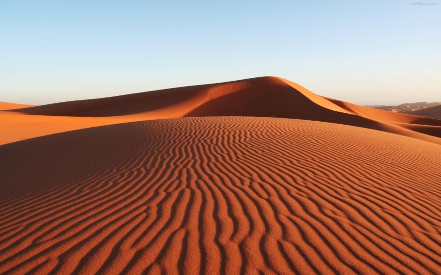 2421_desert