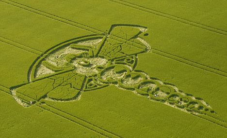 Aerial shots of the 2009 Yatesbury Dragonfly Crop Circle, with five people on the ground to give it scale. Taken from microlight