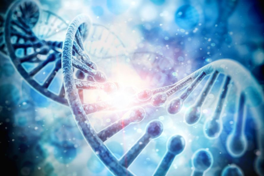 ADN_Genetique