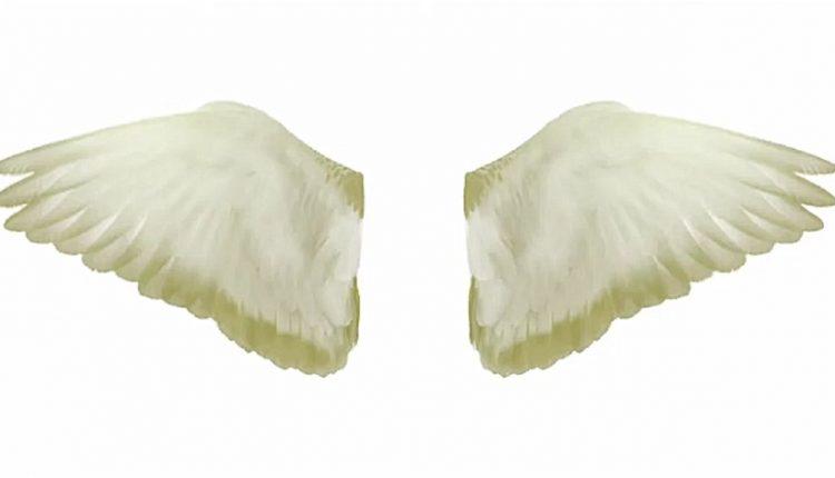 ailes-ange-750x430