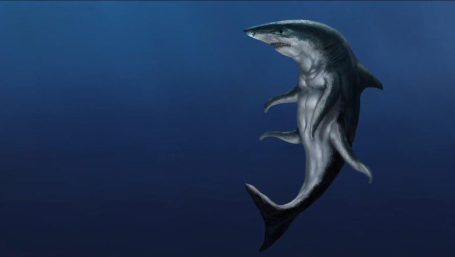 êtres requins