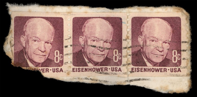 laura-eisenhower-family-tree-768x379